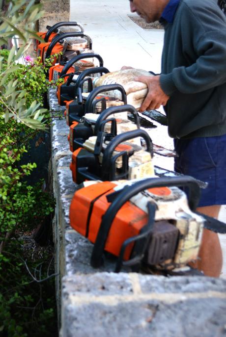 Owens-Tree-Service-Tools